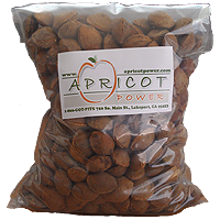 Apricot Pits (In Shell)