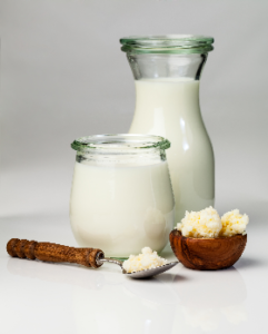 milk-based kefir with starter grains